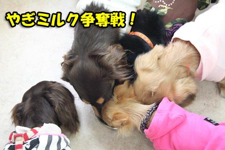 2008 04 20 吹田オフ会 blog05のコピー