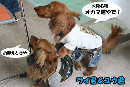 2008 04 20 吹田オフ会 blog10のコピー