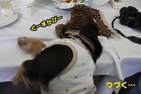 2008 04 20 吹田オフ会 blog14のコピー