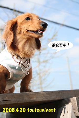 2008 04 20 吹田オフ会 blog23のコピー
