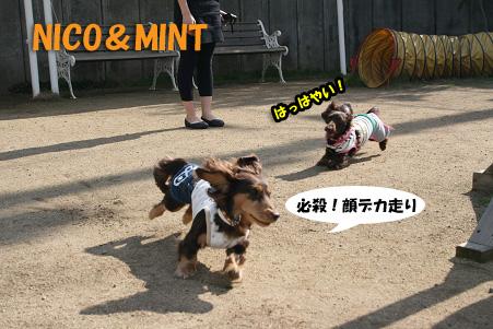 2008 04 20 吹田オフ会 blog24のコピー