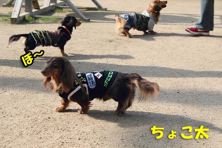 2008 04 20 吹田オフ会 blog28のコピー