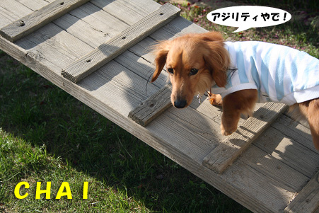2008 04 20 吹田オフ会 blog12のコピー