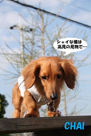 2008 04 20 吹田オフ会 blog22のコピー