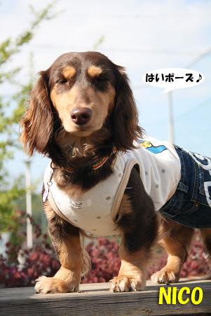 2008 04 20 吹田オフ会 blog19のコピー