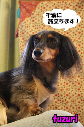 2008 05 03 みあちゃん送別会 blog04のコピー