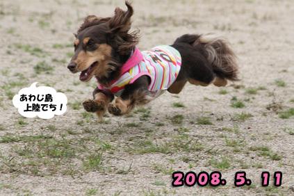 2008 05 11 淡路島オフ会 blog01のコピー