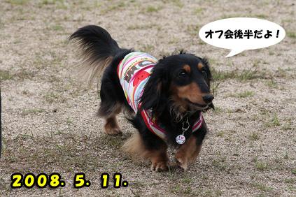 2008 05 11 淡路島オフ会 blog14のコピー
