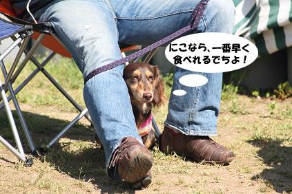 2008 05 11 淡路島オフ会 blog06のコピー
