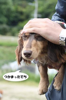 2008 05 11 淡路島オフ会 blog03のコピー