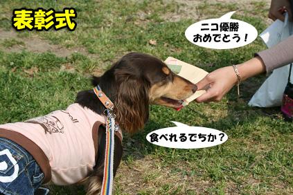 2008 05 17 ダックス友の会オフ blog09のコピー