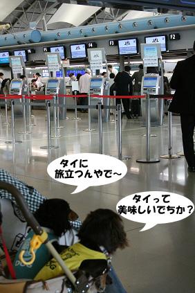 2008 05 25 りんくうアウトレット blog08のコピー