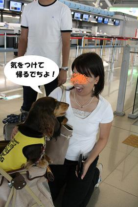 2008 05 25 りんくうアウトレット blog14のコピー