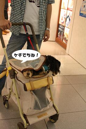 2008 05 25 りんくうアウトレット blog11のコピー