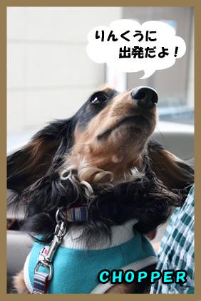 2008 05 25 りんくうアウトレット blog01のコピー