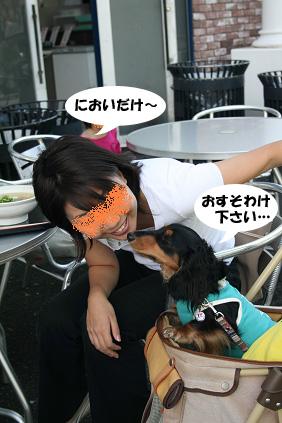 2008 05 25 りんくうアウトレット blog13のコピー