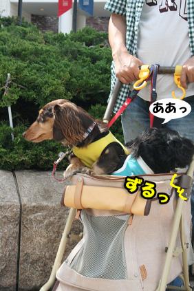 2008 05 25 りんくうアウトレット blog03のコピー
