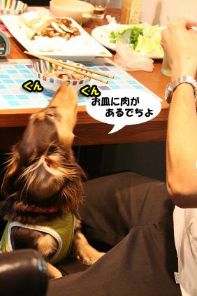 2008 06 07 牛しゃぶ blog08のコピー
