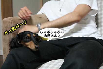 2008 06 07 牛しゃぶ blog06のコピー