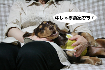 2008 06 07 牛しゃぶ blog05のコピー