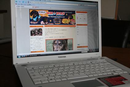 2008 06 15 日常の事 blog02