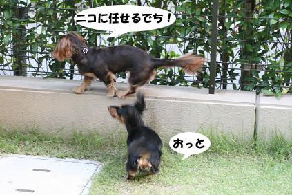 2008 07 19 お家で撮影会 blog04のコピー
