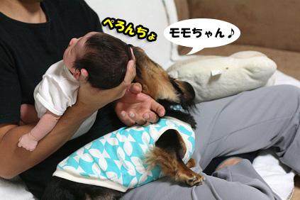 2008 09 20 モモ blog03のコピー