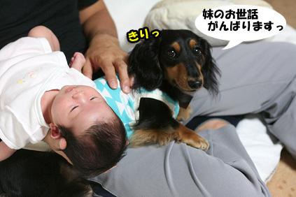 2008 09 20 モモ blog05のコピー