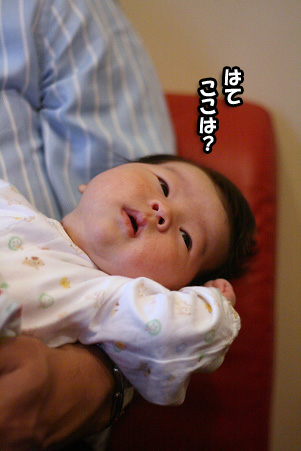 2008 10 11 カフェデビュー blog08のコピー