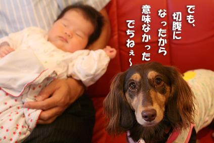 2008 10 11 カフェデビュー blog09のコピー