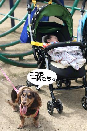 2008 10 12 長居公園散歩 blog02のコピー