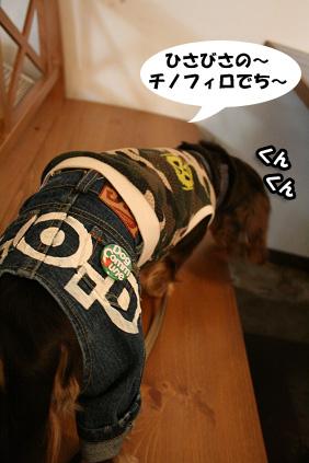 2008 10 18 カフェチノフィロ blog01のコピー