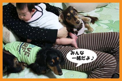 2008 10 26 おかえりチョッパー blog01のコピー