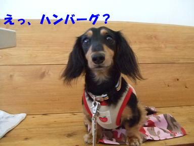 blog070813nanba04.jpg