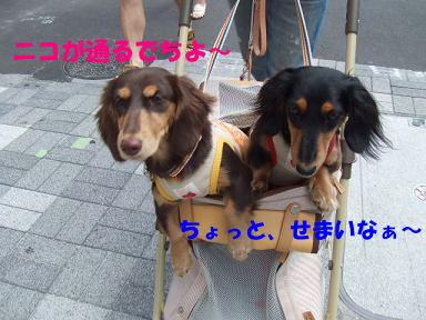 blog070813nanba08.jpg