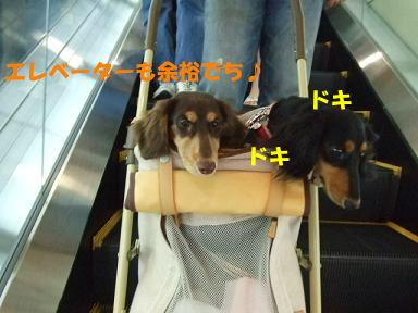 blog070813nanba11.jpg