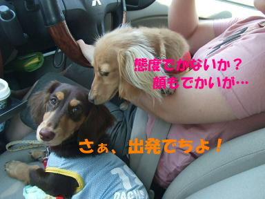 blog070817umi01.jpg