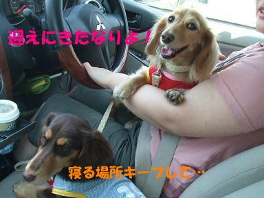 blog070817umi02.jpg