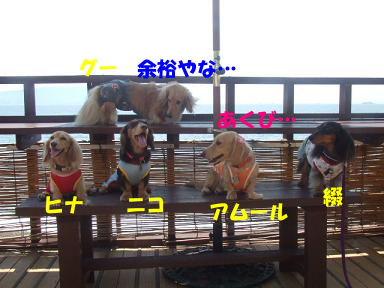 blog070817umi09.jpg