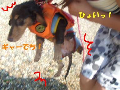 blog070817umi13.jpg