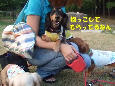 blog070820nagai04.jpg