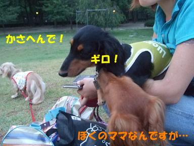 blog070820nagai07.jpg