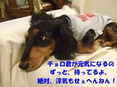 blog070822choro04.jpg