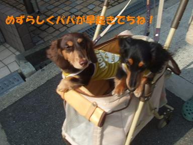 blog070825marason02.jpg