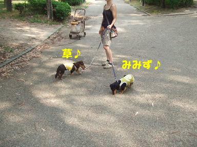 blog070825marason07.jpg