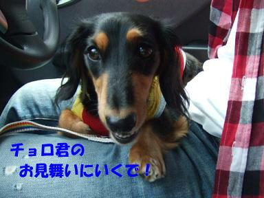 blog070902choro01.jpg