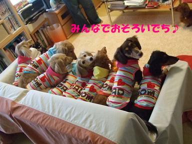 blog070902choro08.jpg