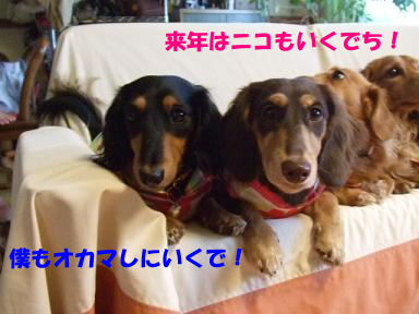 blog070902choro09.jpg