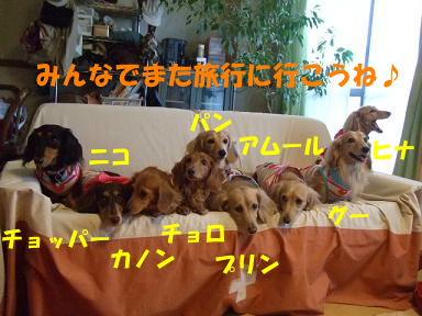 blog070902choro10.jpg