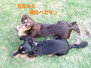 blog070907dou01.jpg